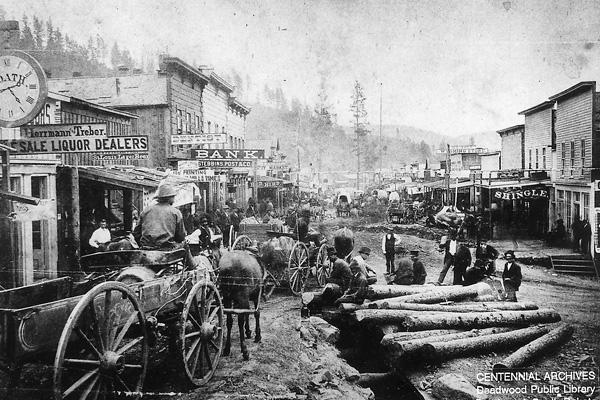 Deadwood-logs