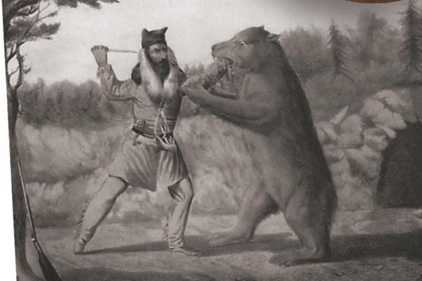 Bear-fight