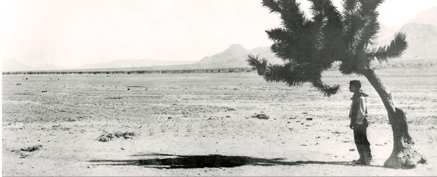 Buster Keaton starred as a character named Friendless who went West and befriended a cow named Brown Eyes in the 1925 MGM movie, Go West. Keaton used the Diamond Bar as a film location. It is unknown if this photo was taken while on location, but the terrain and the Joshua Tree are accurate to the area.