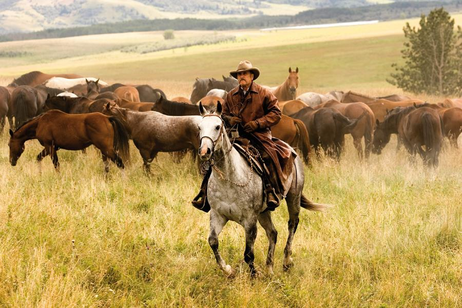 Robert Duvall's third jewel in the Western crown: Lonesome Dove, Open Range and now Broken Trail.