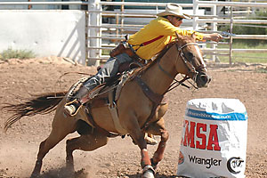 2009_cowboy_mounted_shooter