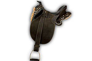 2009_saddle