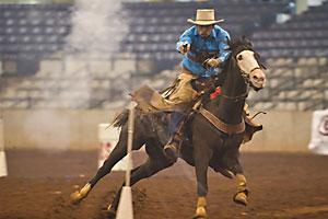 2010_cowboy_mounted_shooter