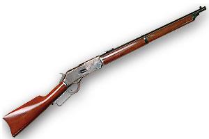 2010_firearm