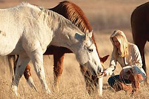 2010_horse_advocate