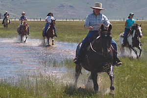 best_dude_ranch_hunewell_guest_ranch_cattle_drive