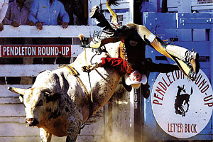 best_professional_rodeo_pendleton_round_up_oregon_let_er_buck