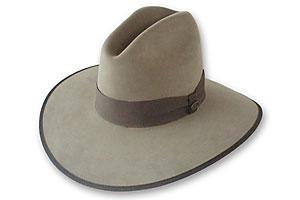 best_western_hatmaker_beaver_brand_hats_1860