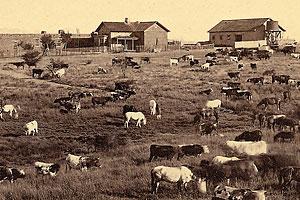empire_ranch_centennial_celebration