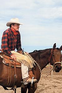 ian_tyson_songwriter_music_western