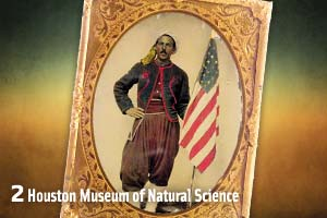 houston-museum-of-natural-science_zouave_north-africa