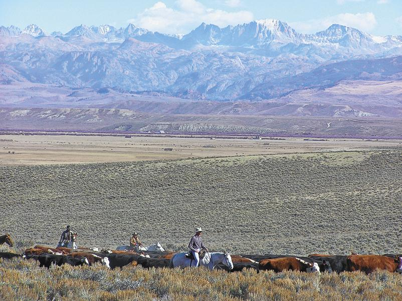 #9 Pinedale, WyomingThe Wind River Range in west-central  Wyoming frames the Eastern horizon of Pinedale, which annually celebrates the Green River Drift Cattle Drive, one of the oldest drives in the nation.– Courtesy VisitPinedale –