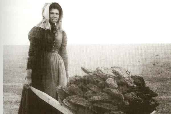 pioneer-woman-blog