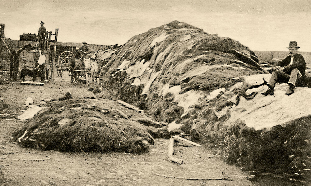 "In 1878, Charles Rath sat on 40,000 buffalo hides in the hide yard of the store he owned with Robert M. Wright in Dodge City, Kansas. Wright said of Rath, ""He bought and sold more than a million of buffalo hides, and tens of thousands of buffalo robes, and hundreds of cars of buffalo meat, both dried and fresh, besides several car loads of buffalo tongues."" – Courtesy National Archives and Records Administration –"