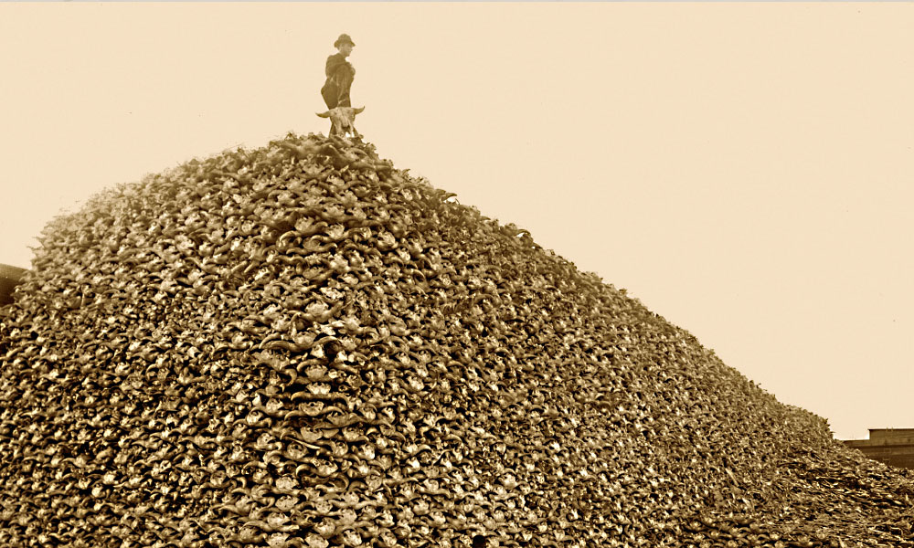 Buffalo hunters