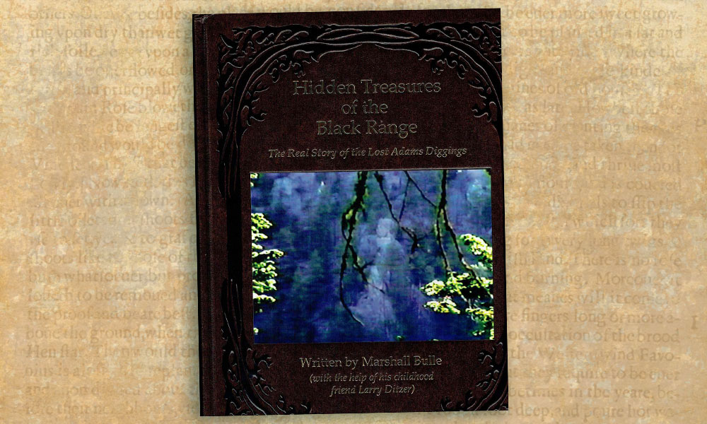 Hidden Treasures book cover