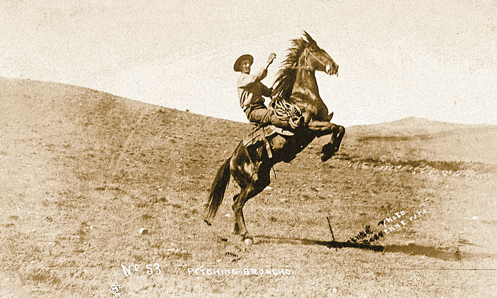 Pitching Bronco W.G. Walker became famous for taking photographs of scout and assassin Tom Horn in his jail cell in Cheyenne, Wyoming, but he mainly captured images of Wyoming cowboys, like this one on his pitching bronco; sold in a collection of 25 photographs for an $1,800 bid at Cowan's Auctions on June 12, 2015.
