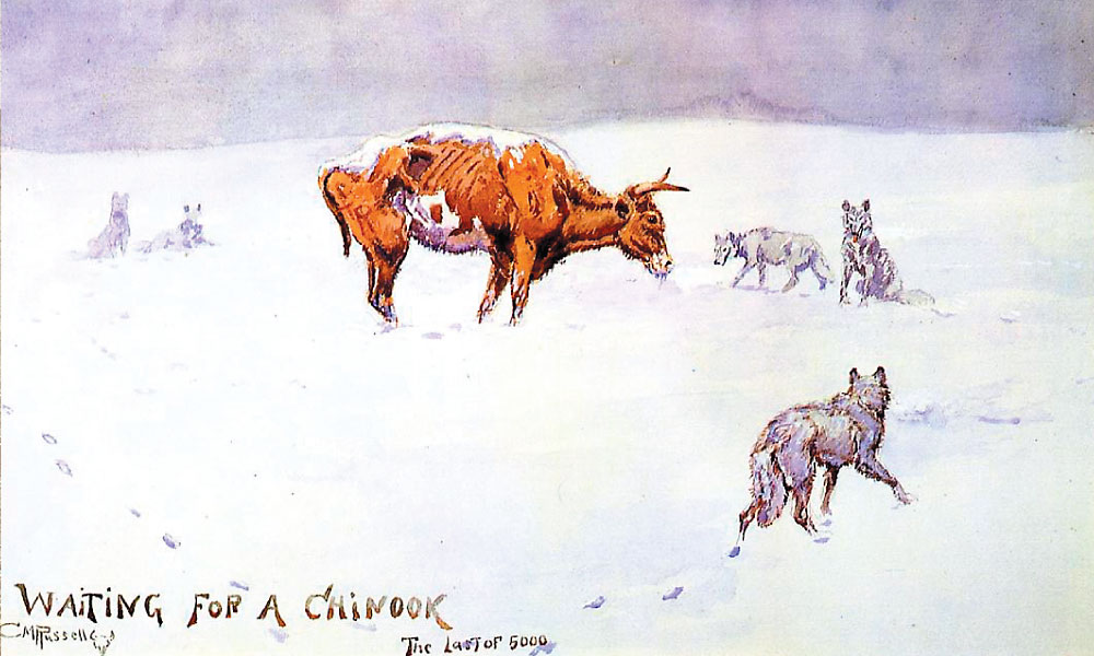 """When L.E. Kaufman checked in on the condition of his Montana cattle ranch, the OH,  during the winter of 1886-87, he received news of the devastation via this sketch by cowboy artist Charles M. Russell, titled """"Waiting for a Chinook—The Last of 5,000.""""  – True West Archives –"""