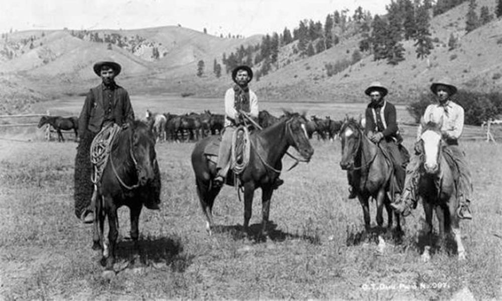 cowboy-lingo