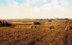 RR_Lead_Wilders-novels-of-her-childhood-homesteading-on-the-Great-Plains-of-South-Dakota