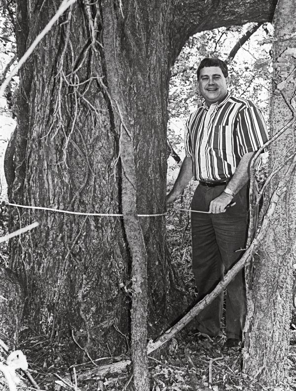 Ronnie Atnip solved the mystery of John Wesley Hardin's birthplace by locating the Rev. James G. Hardin's farm. In this 1995 photo, he stands by one of the old Pecan trees mentioned in the deed. All four Pecan trees were still standing nearly 150 years after the gunfighter's birth.